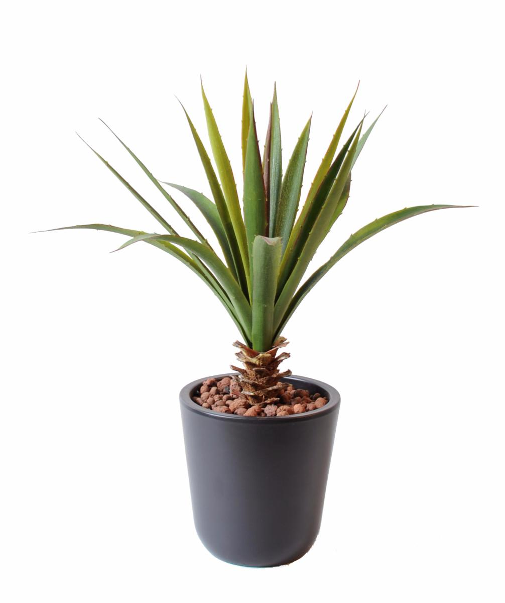 Plante artificielle aloe en piquet cactus artificiel for Cactus artificiel pour exterieur