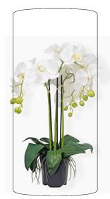 Plante artificielle Orchidée en pot - plante synthétique - H.56 cm blanc