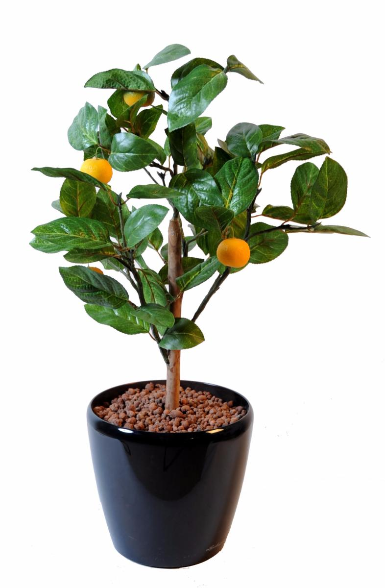 Arbre artificiel fruitier oranger mini en pot int rieur cm vert orange - Arbre fruitier en pot ...