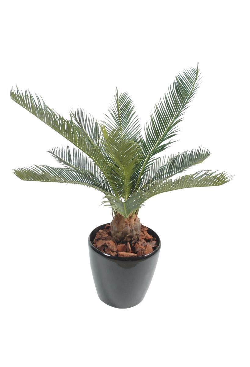 palmier artificiel cycas baby int rieur ext rieur cm vert. Black Bedroom Furniture Sets. Home Design Ideas