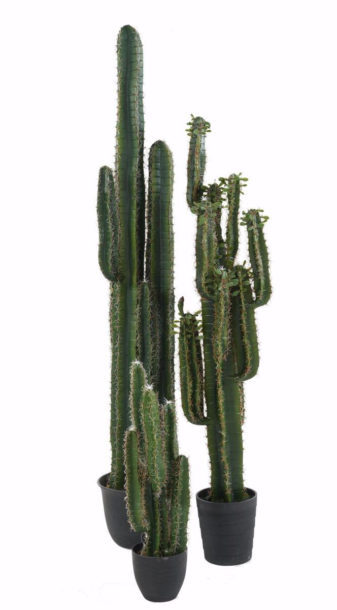 plante artificielle cactus finger plante synth tique int rieur h 150 cm vert. Black Bedroom Furniture Sets. Home Design Ideas