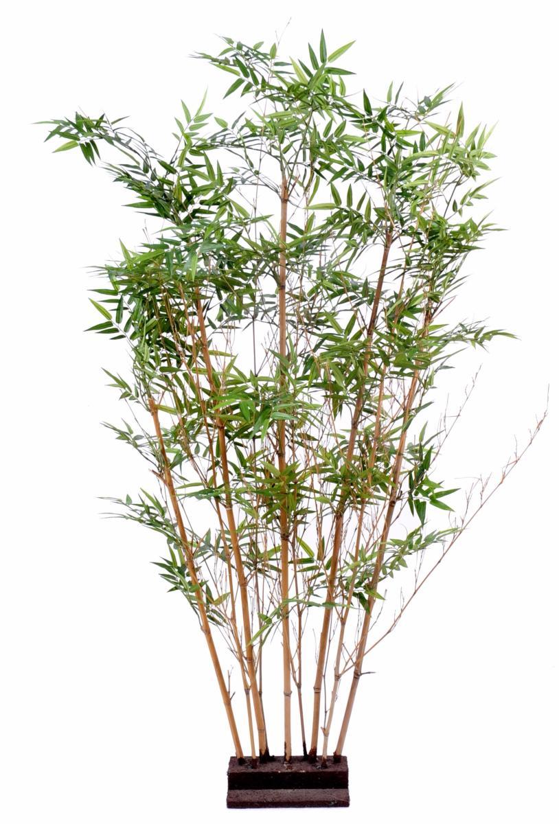 haie artificielle bambou oriental int rieur 150 cm vert. Black Bedroom Furniture Sets. Home Design Ideas