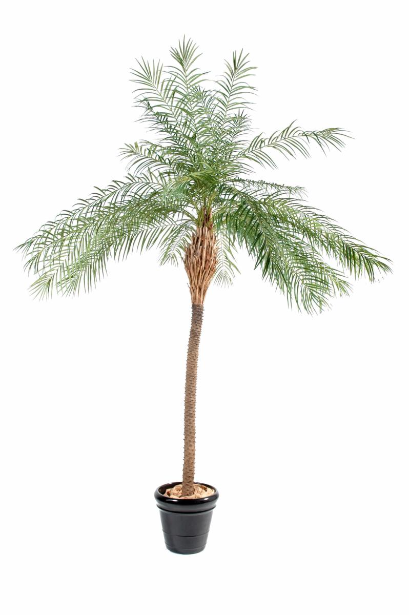 Palmier artificiel phoenix new plante int rieur cm for Palmier artificiel interieur
