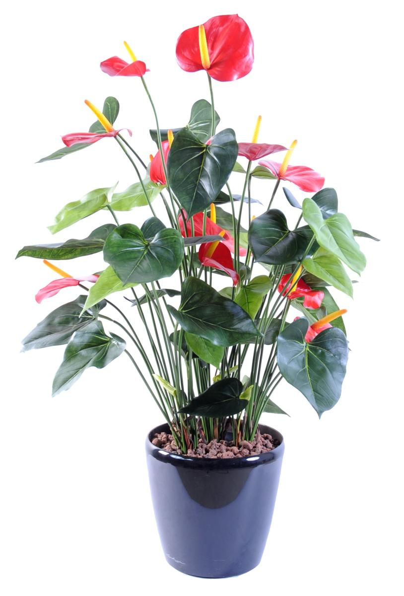 Plante artificielle fleurie Anthurium en pot - décoration ...