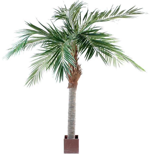 Palmier artificiel majesty arbre tropical luxe for Arbre palmier artificiel