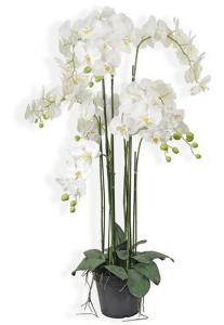 Plante artificielle Orchidée en pot - plante synthétique - H.115 cm blanc