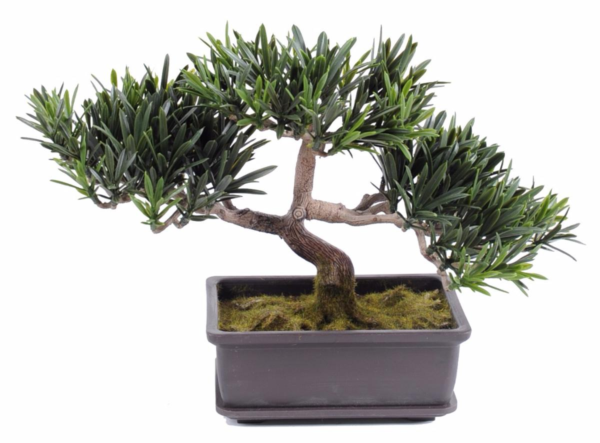 Arbre artificiel miniature bonsa podocarpus en coupe for Arbre bonsai exterieur
