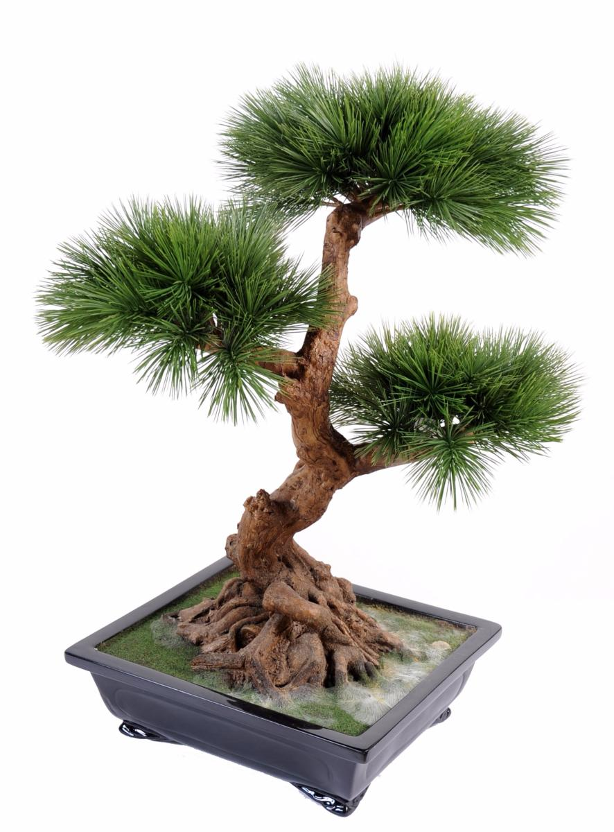 Bonsa artificiel arbre miniature pin en coupe plante d for Arbres artificiels interieur