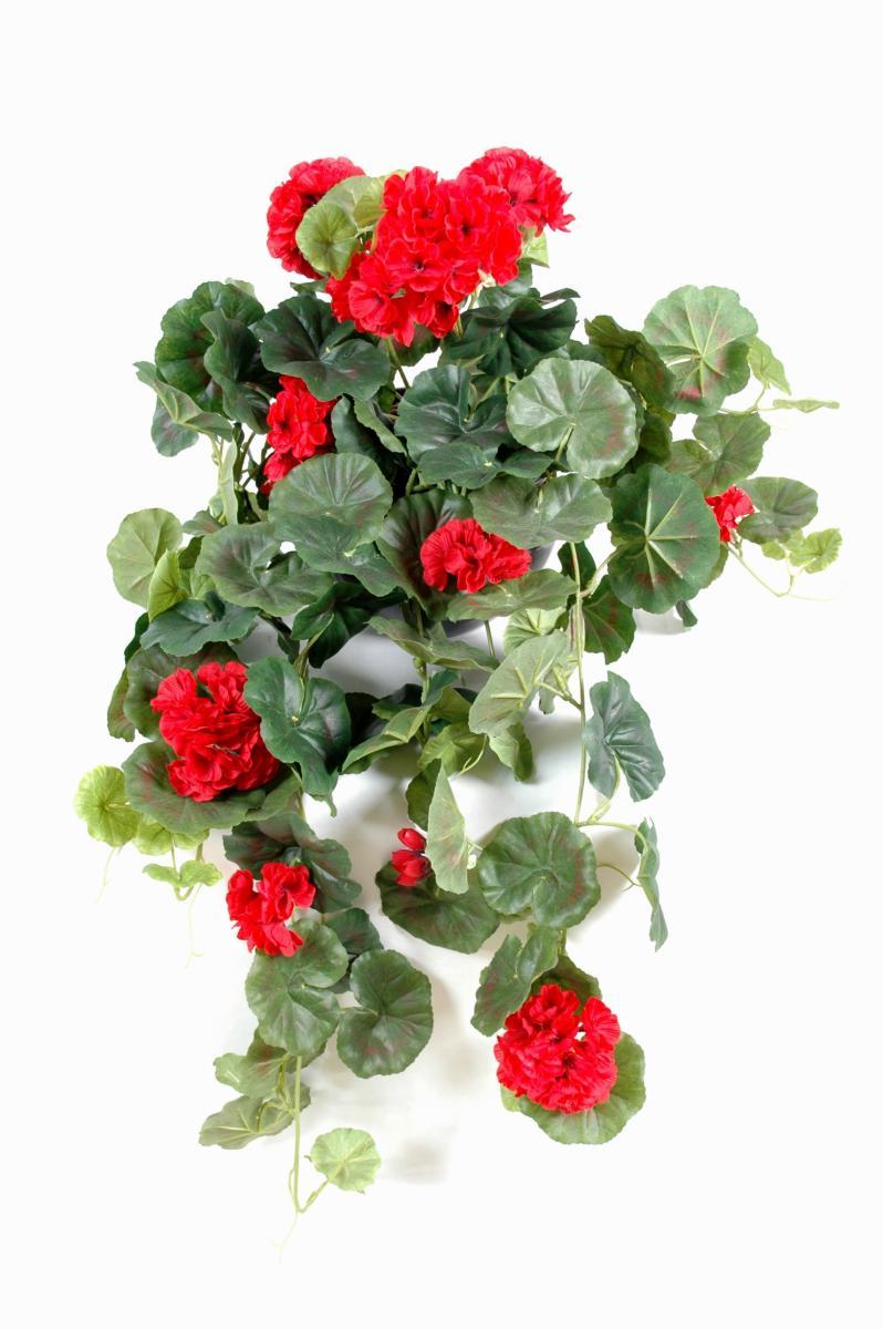 Plante fleurie artificielle chute de g ranium d coration for Geranium d interieur
