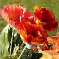 Fleur en tissu fleurs en tissu for Fleurs artificielles tissu