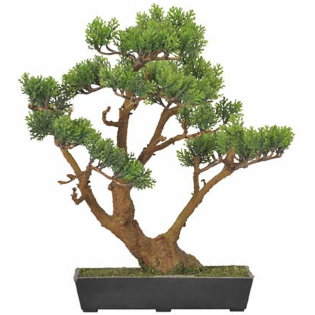 Bonsa artificiel cypr s arbre miniature plante d for Entretien bonsai interieur