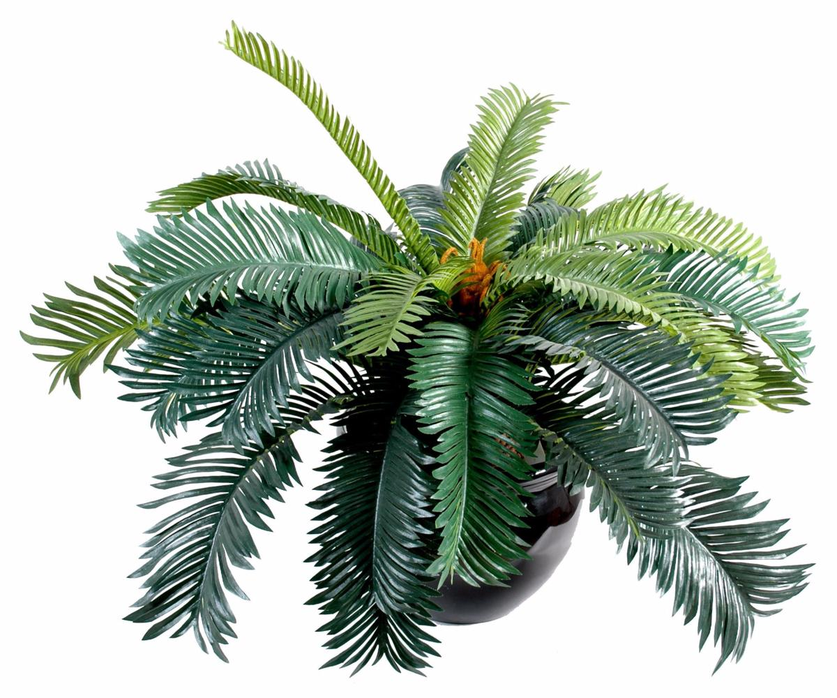 Palmier artificiel cycas 20 feuilles en piquet int rieur for Palmier artificiel interieur