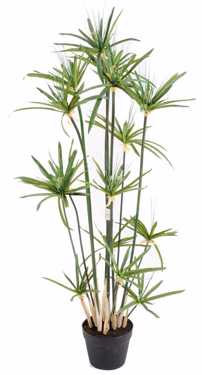 plante artificielle papyrus alternifolius en pot int 233 rieur h 125 cm vert