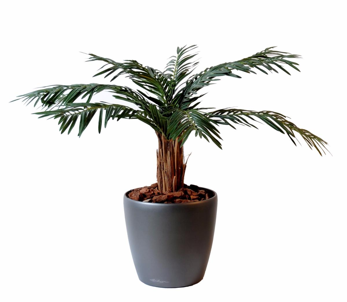 palmier artificiel cycas palm plante int rieur cm ForPalmier Artificiel Interieur