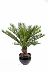 Artificielflower expert en plante artificielle ext rieur for Palmier artificiel interieur