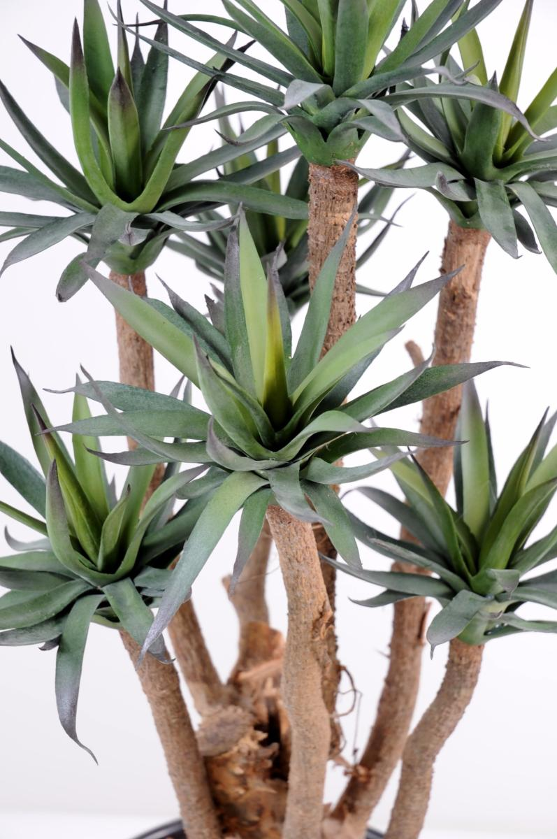 Plante artificielle agave 7 troncs succulente pour for Belle plante artificielle