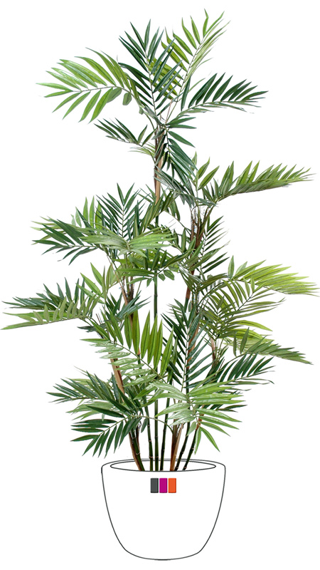 palmier parlour 13 cannes plante artificielle d 39 int rieur cm. Black Bedroom Furniture Sets. Home Design Ideas