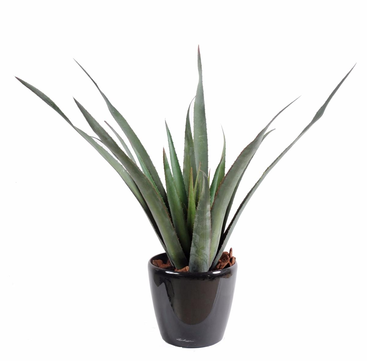 Plante artificielle aloe ferox en pot cactus artificiel for Pot de plante exterieur