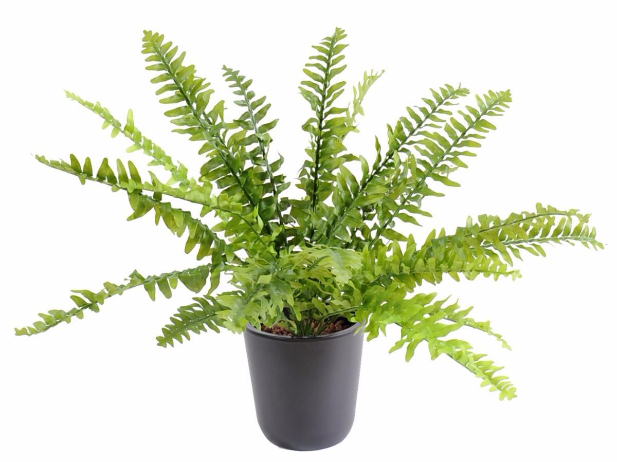 plante artificielle foug re boston en piquet int rieur 65cm. Black Bedroom Furniture Sets. Home Design Ideas