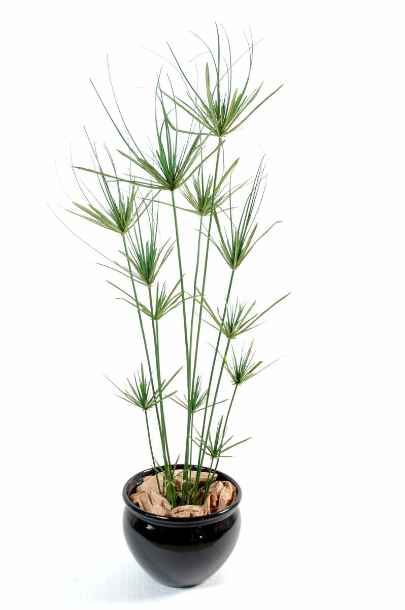 Plante artificielle papyrus ornemental plastique en pot for Plantes en plastique exterieur