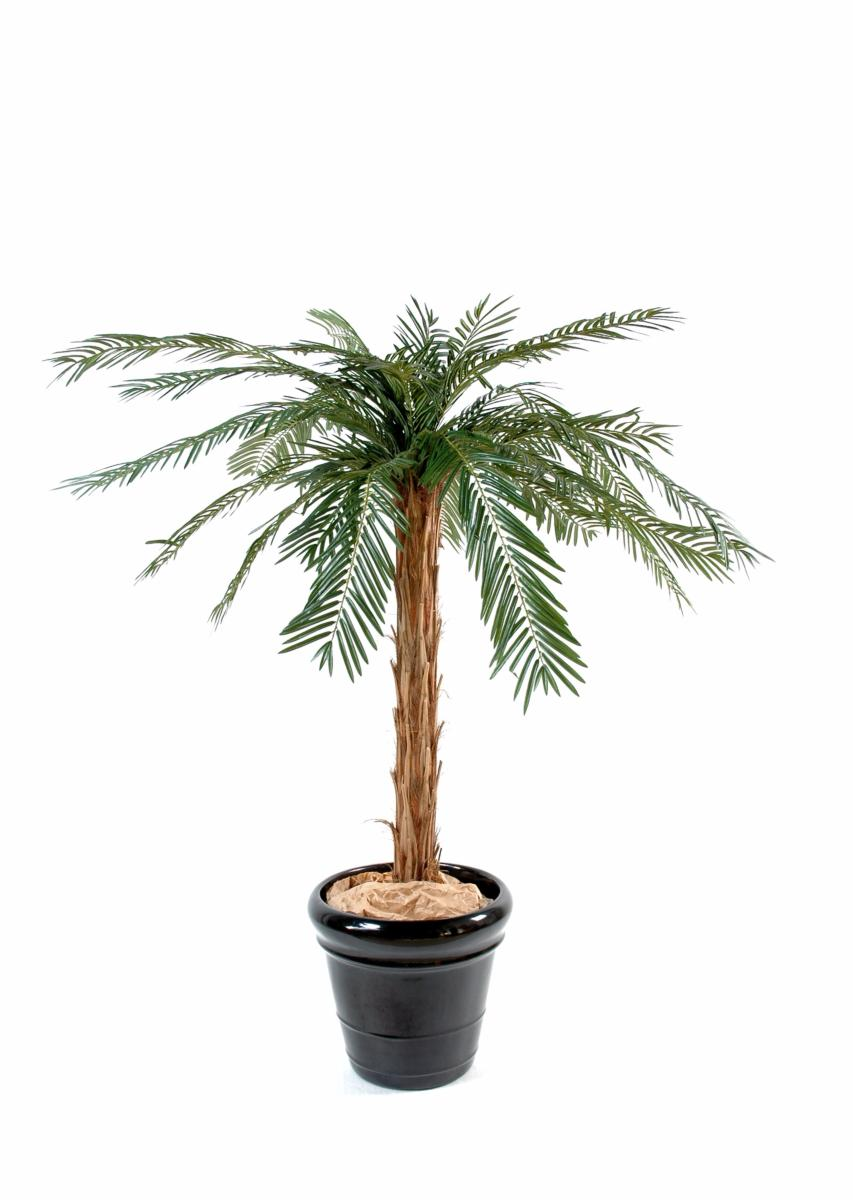 Palmier artificiel cycas palm plante int rieur for Palmier artificiel interieur