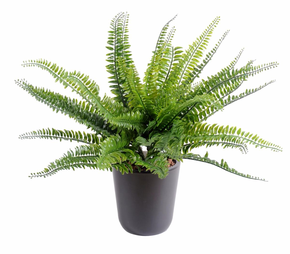 Plante artificielle foug re boston plastique en piquet int rieur ext rieur h 40cm vert for Plante exterieur