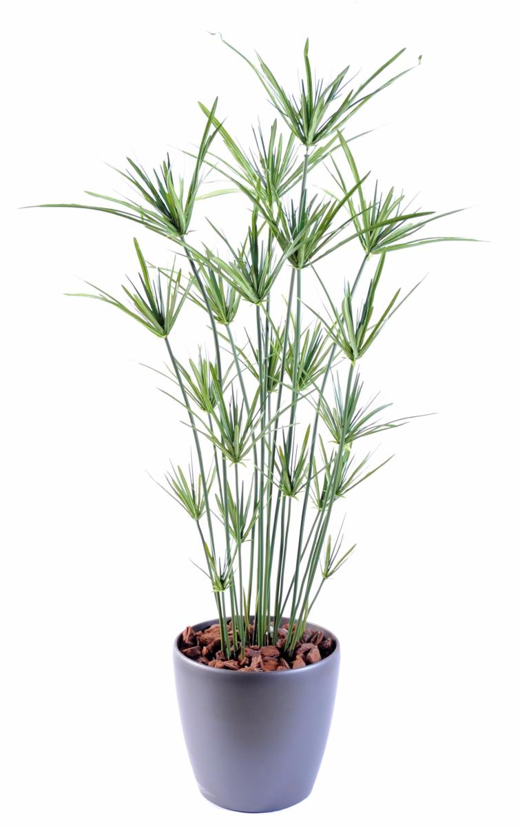 Plante artificielle papyrus ornemental plastique en pot int rieur ext rieur h 110cm vert for Plante exterieur