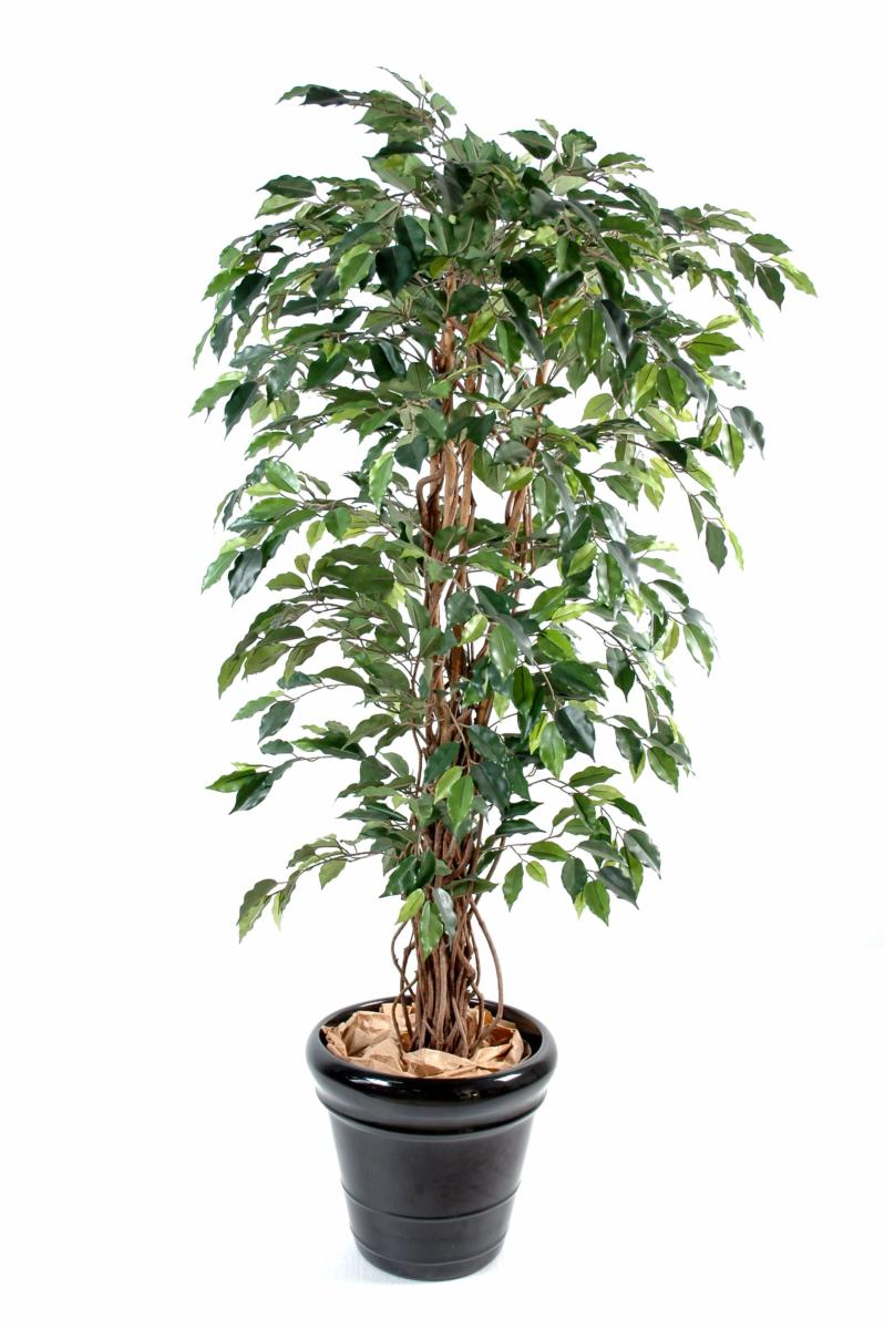 Arbre artificiel ficus lianes grandes feuilles plante d for Arbres artificiels interieur