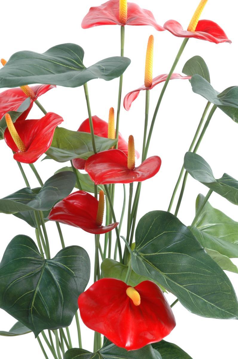 plante artificielle fleurie anthurium en pot plante d. Black Bedroom Furniture Sets. Home Design Ideas
