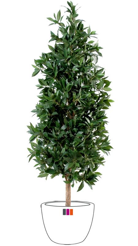 Plante artificielle laurier pyramide luxe haut de gamme for Arbre artificiel haut de gamme