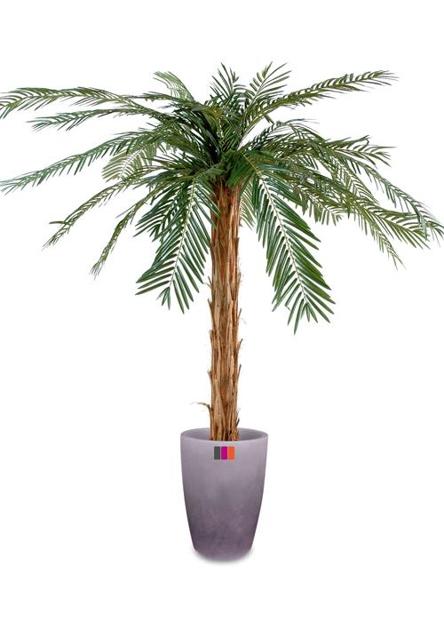 Palmier artificiel cycas palm tronc naturel feuillage for Plante palmier exterieur