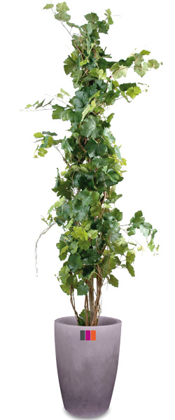 Arbre artificiel fruitier vigne plante pour int rieur for Plante arbre interieur