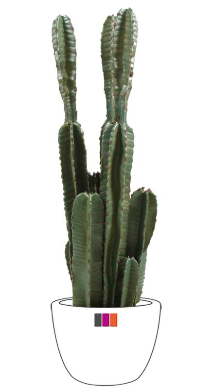 Plante artificielle cactus artificiel 8 tiges int rieur cm for Plante 90 cm