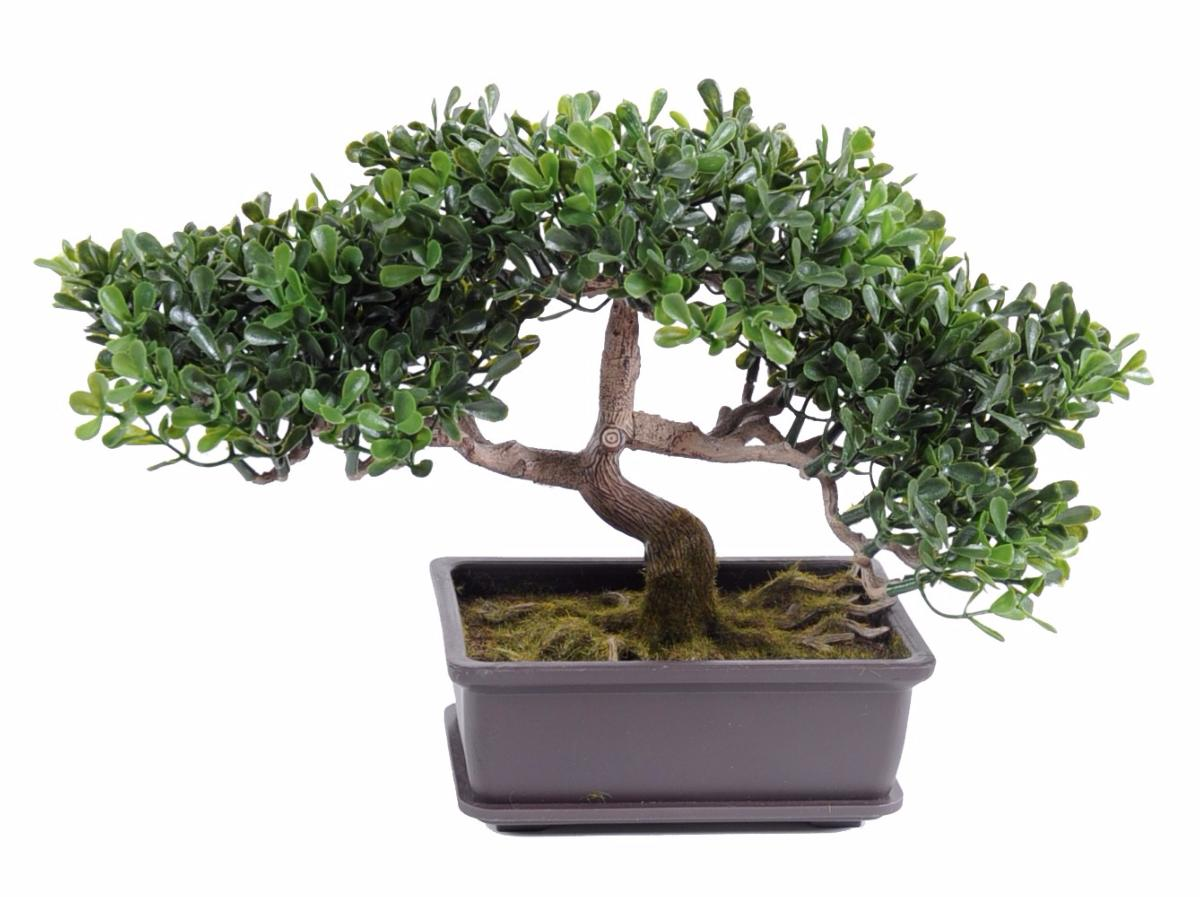 arbre artificiel miniature bonsa th en coupe plante synth tique d 39 int rieur 22 cm vert. Black Bedroom Furniture Sets. Home Design Ideas