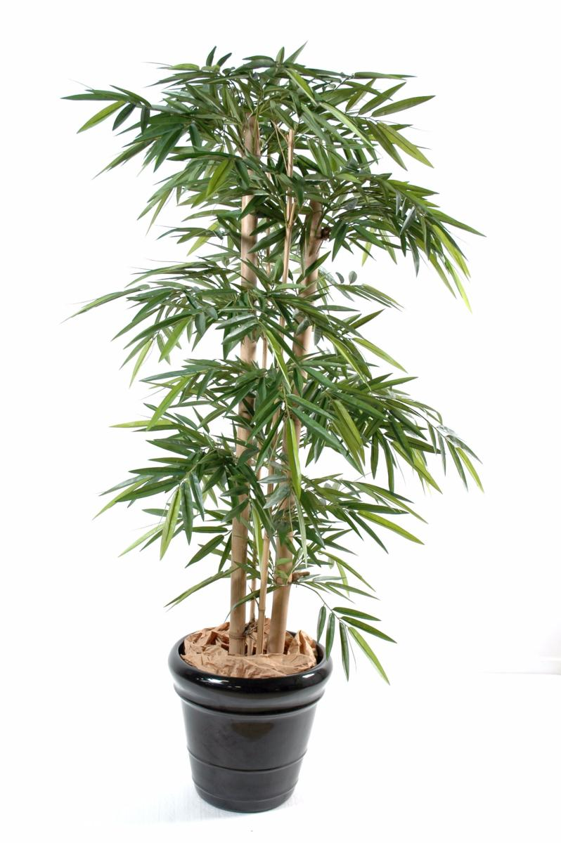 Bambou artificiel new 4 grosses cannes int rieur h for Arbre bambou artificiel