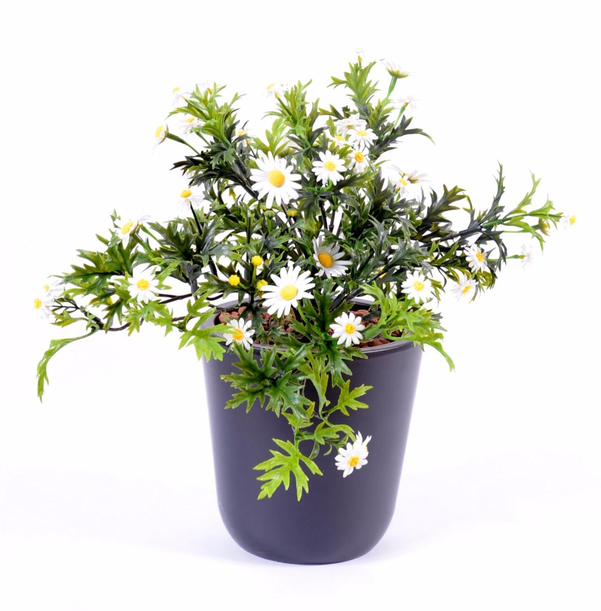 Plante artificielle marguerite en piquet plastique for Plantes fleuries exterieur en pot