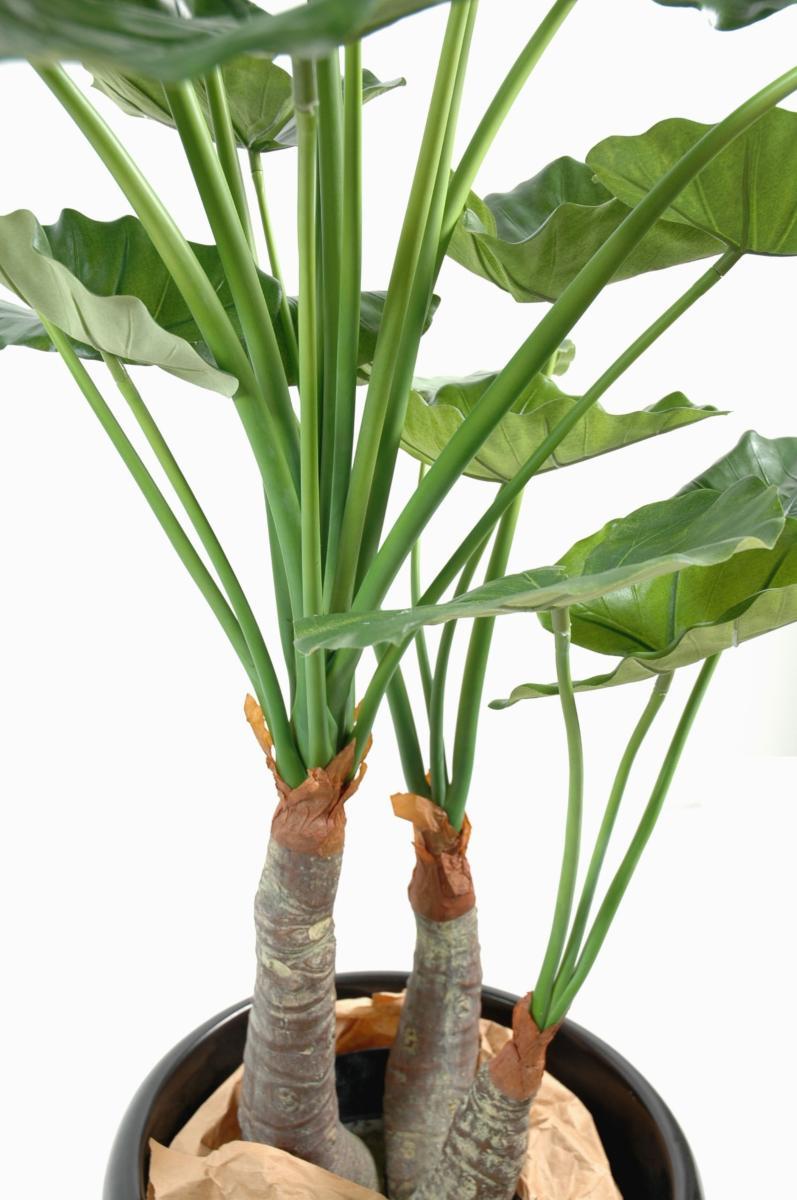 plante artificielle tropicale alocasia d coration d 39 int rieur cm. Black Bedroom Furniture Sets. Home Design Ideas