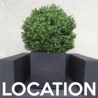 Location de plantes artificielles arbres semi naturels for Arbres artificiels haut de gamme