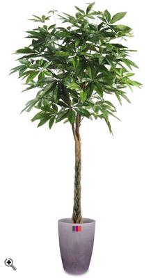 Plante artificielle pachira tress arbre pour int rieur for Arbre artificiel pour interieur