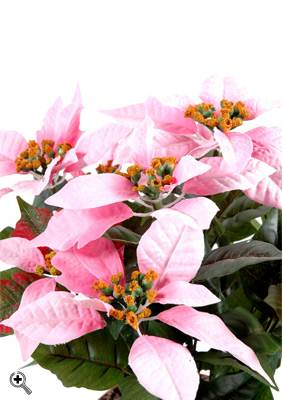 Plante artificielle fleurie poinsettia plante en piquet for Belle plante artificielle