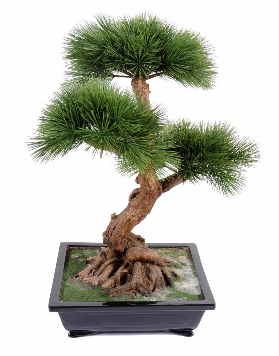 Bonsa artificiel arbre miniature pin en coupe plante d for Plante arbre interieur