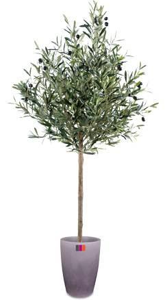 arbre artificiel olivier new t te plante pour int rieur cm. Black Bedroom Furniture Sets. Home Design Ideas