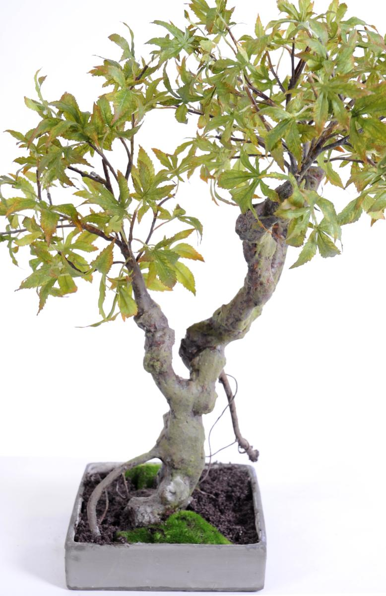 arbre artificiel miniature bonsai erable en coupe plante d 39 int rieur cm automne. Black Bedroom Furniture Sets. Home Design Ideas