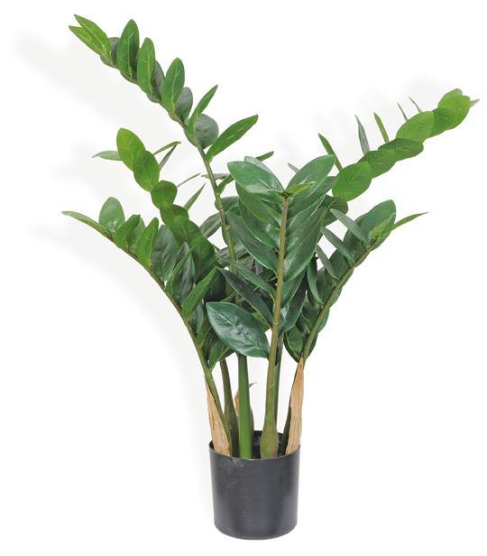 plante artificielle zamioculcas d coration d 39 int rieur h 70 cm vert. Black Bedroom Furniture Sets. Home Design Ideas