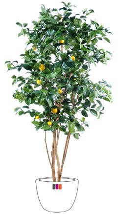 arbre fruitier artificiel citronnier et fruits plante int rieur cm. Black Bedroom Furniture Sets. Home Design Ideas
