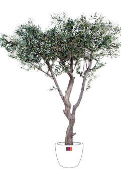 Arbre artificiel olivier new g ant d coration pour for Arbre artificiel pour interieur
