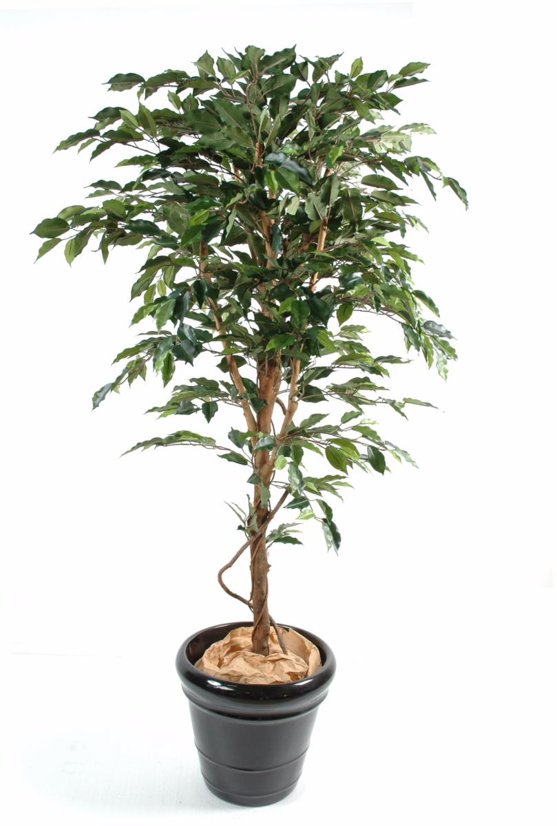 Arbre artificiel ficus tronc simple plante synthetique for Plante interieur photo