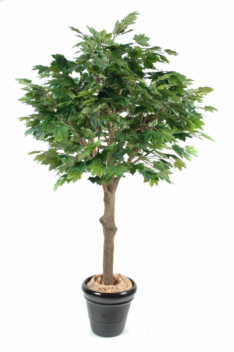 arbre forestier artificiel platane t te d coration pour int rieur cm. Black Bedroom Furniture Sets. Home Design Ideas