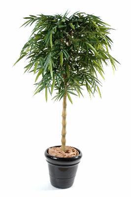 bambou artificiel new bouddha plante synth tique d 39 int rieur h 180 cm vert. Black Bedroom Furniture Sets. Home Design Ideas