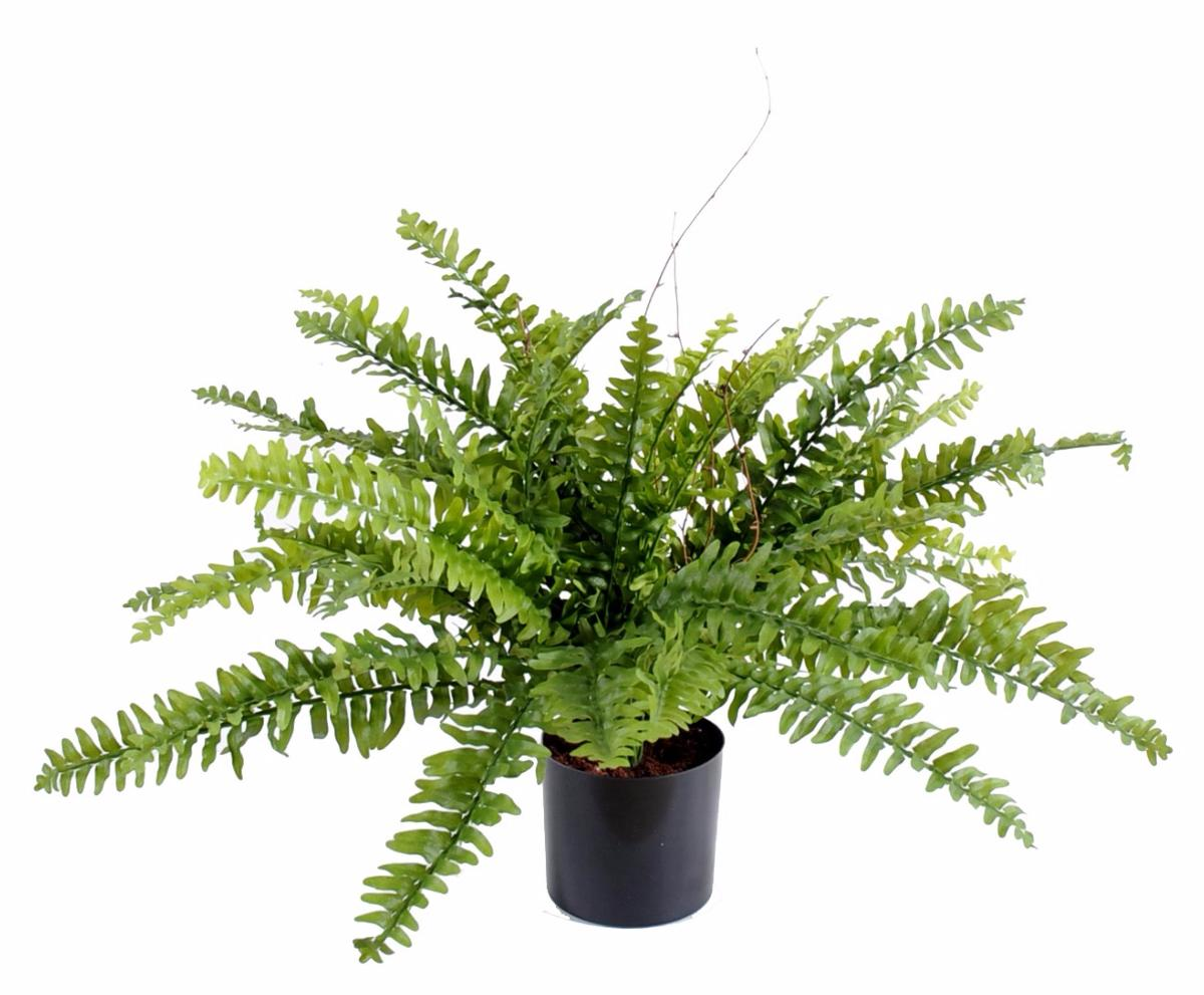 Plante Artificielle Foug Re Boston En Pot Int Rieur H 50cm Vert